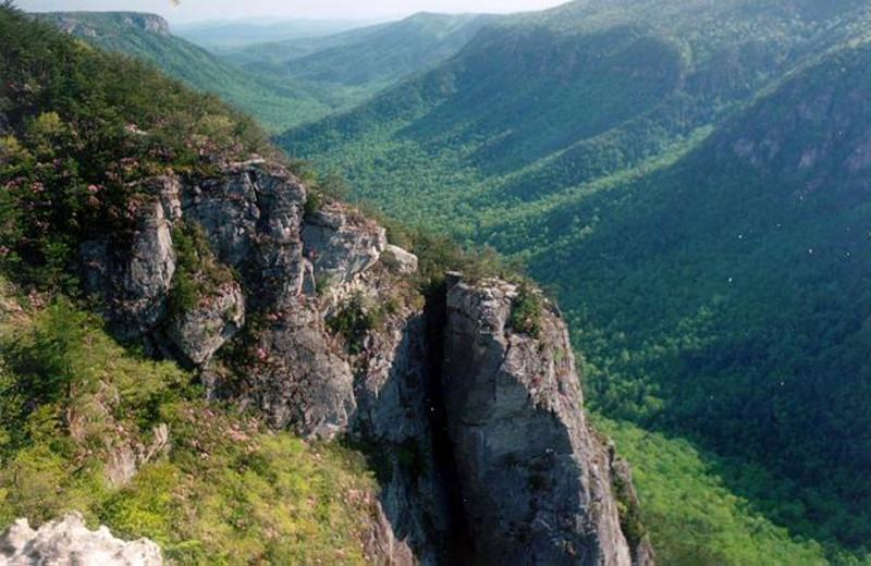 Linville Gorge Bewilderment