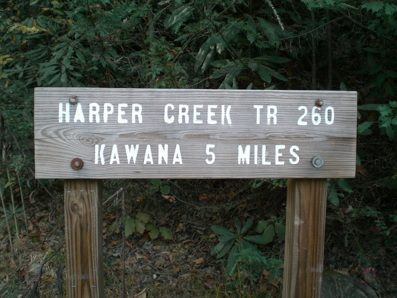 Harpers Creek Trout Fishing