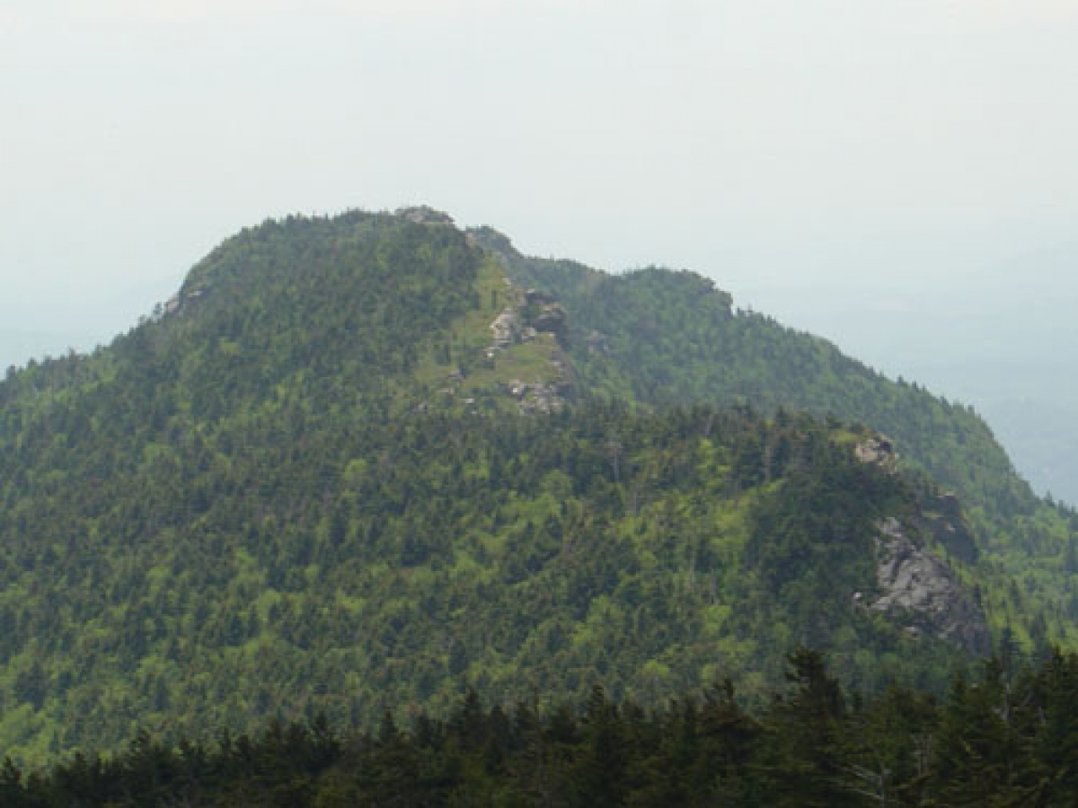 Grandfather Mountain Scout Trail